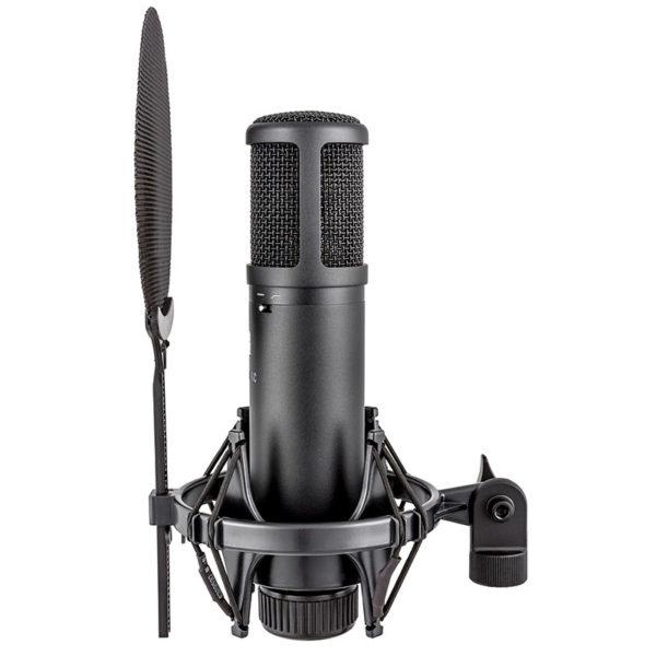 Фото 6 - sE Electronics SE 2200 Студийный конденсаторный микрофон.